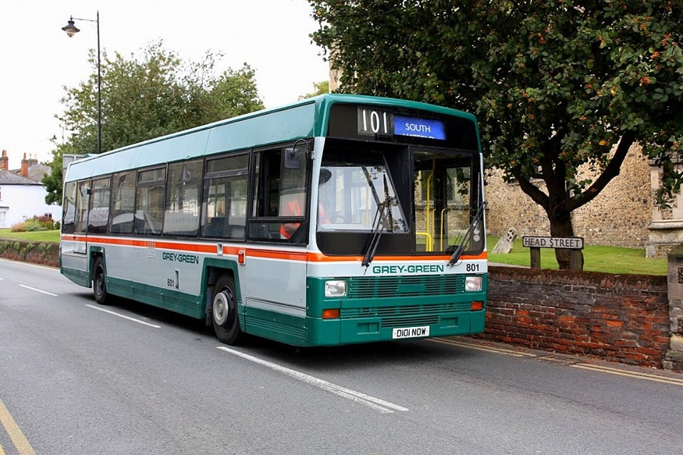 D101NDW 101 GREY GREEN LYNX PRESERVED (HD) 10-9-19 (C BAINES)